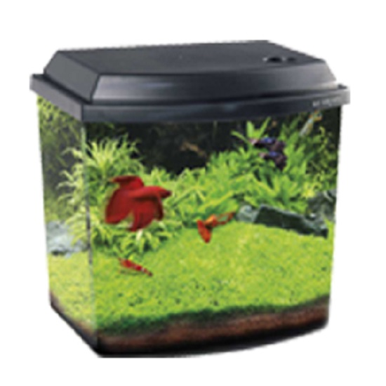 Acquario mini professionale blu 9.5lt con led 1.3watt e filtro 26.1x20.6x25.8