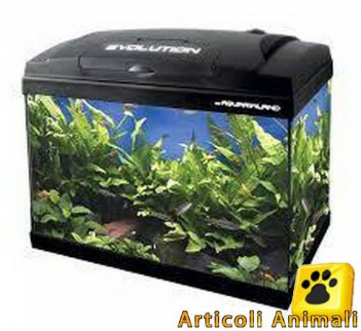Acquario evolution 40 eco version 40x25x28h lt23 con filtro riscaldatore e led