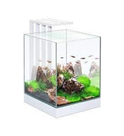 Acquario askoll nexus pure cube 25 29x29x38h con 15 led