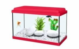 acquario nanolife 40x20x25h 18 litri -