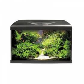 Acquario Completo System Led 63x35x47h