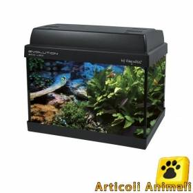 Acquario evolution ecoled 38x23x31h lt21 completo lampada led