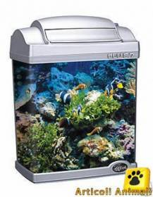 Acquario mini professionale 6