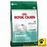 Crocchette cane royal canin mini junior 1kg
