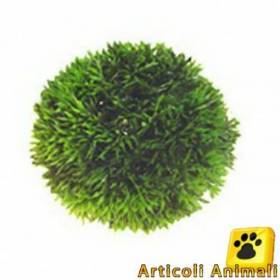 Pianta acquario hobby plant ball 13cm